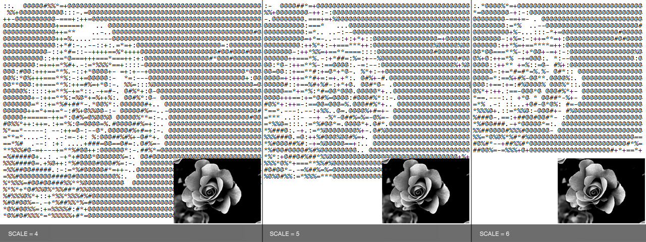 software_asciiart_image08