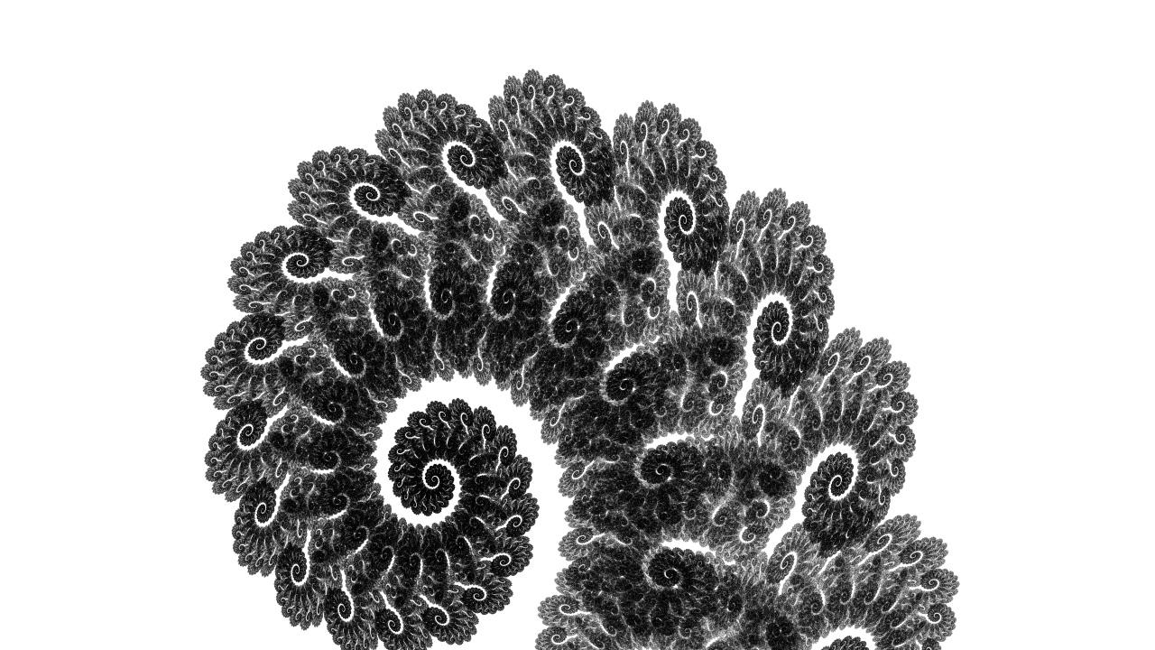 software_fern_image02