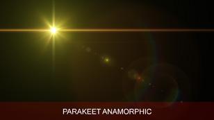 software_ultraflares_flarepack_vol2_parakeet anamorphic